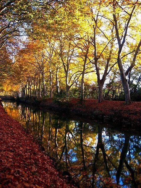 Calendrier photo avec une rivière en automne