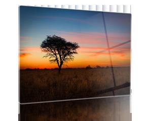 Tableau photo sous plexiglas