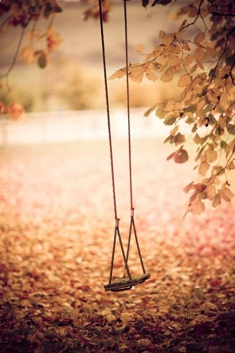 Calendrier photo avec un balançoire en automne