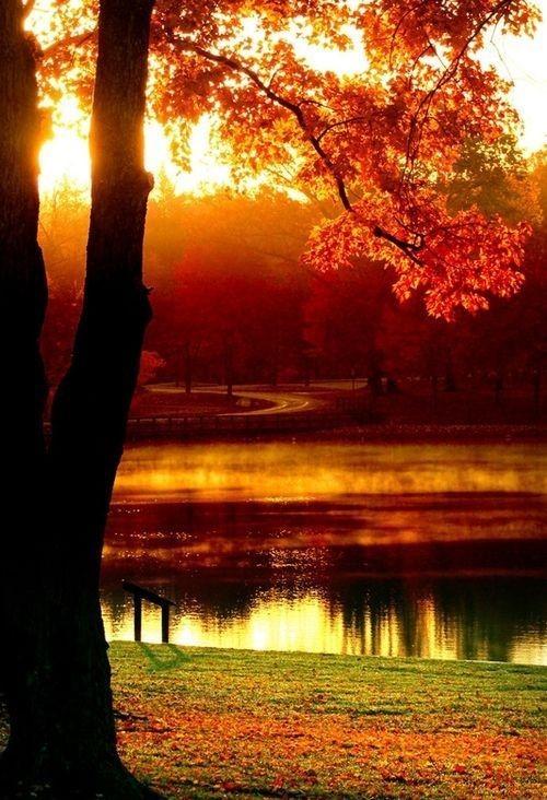 Calendrier photo avec un coucher de soleil en automne