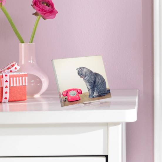 7 raisons d 39 imprimer ses photos sous plexiglas. Black Bedroom Furniture Sets. Home Design Ideas